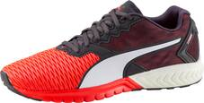 PUMA Herren Trainingsschuhe »Ignite Dual«